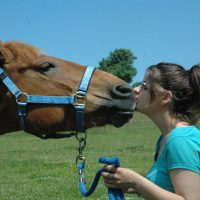 mare-foal-sanctuary-Devon-rehoming-Tosca-autism-sophie-darke
