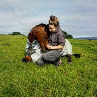 mare-foal-sanctuary-sky-devon-supporter-pledge-donate