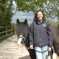 mare-foal-sanctuary-devon-volunteers-horses