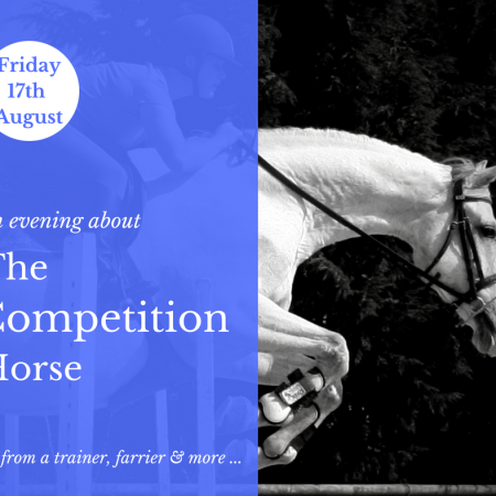 The Competition Horse