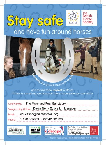 mare-foal-sanctuary-devon-education-safeguarding-poster