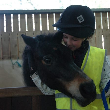 Horse Wise Holiday Club – It's back for the half term