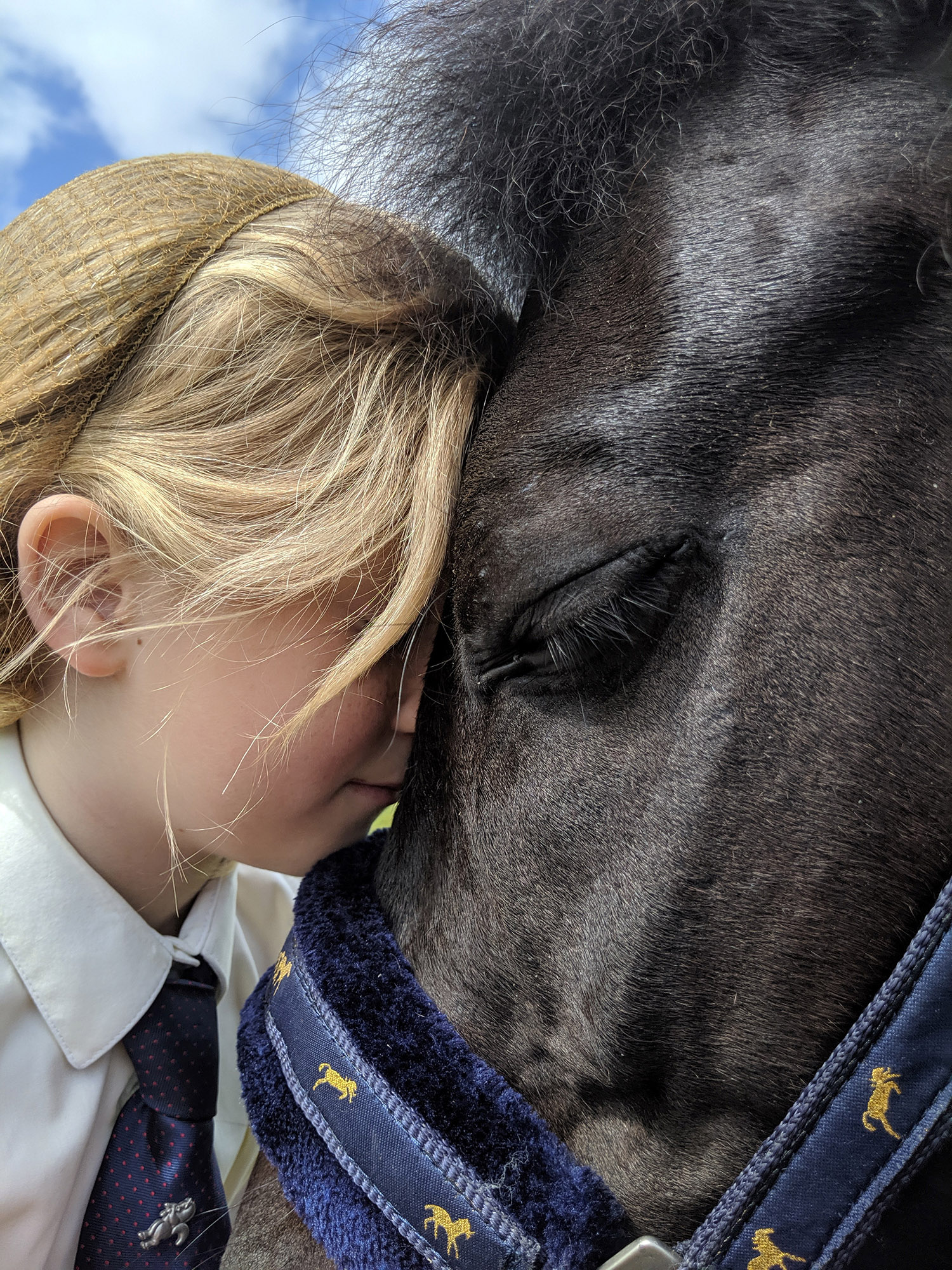 horses-ponies-you-help-rescue-this-year-storm-cloud