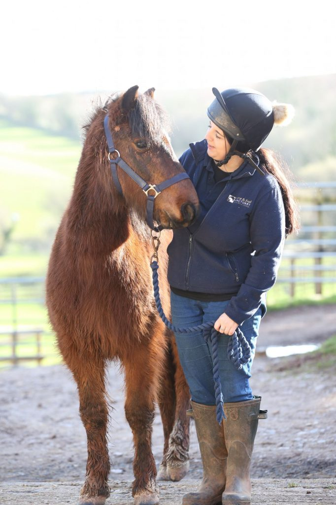 Rescue pony called Mouse with his groom Terri