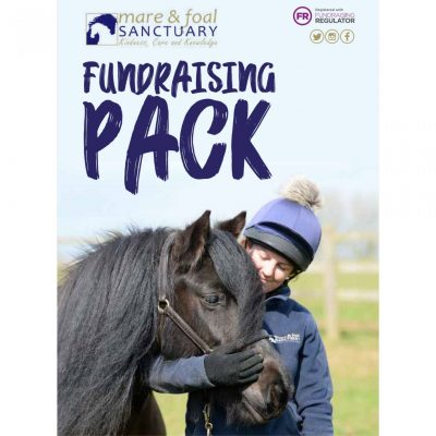Fundraising-materials-pack