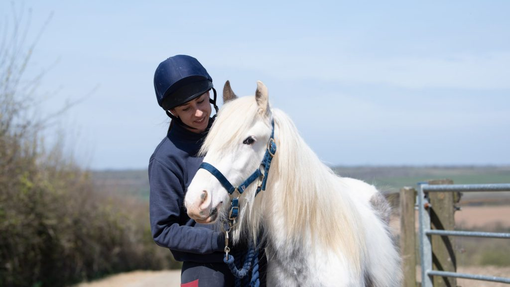 whispering-willows-colt-now