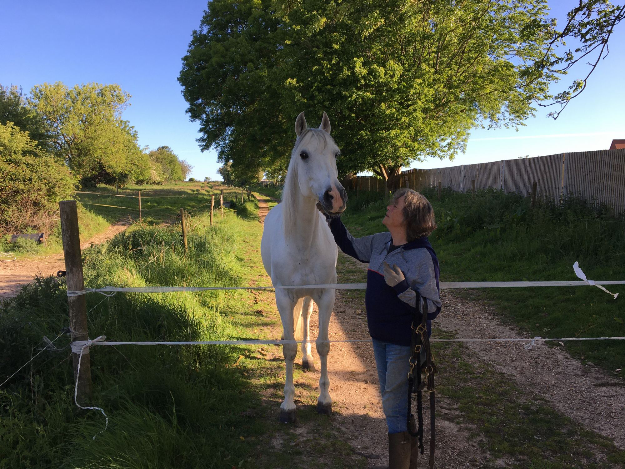 white-horse-with-owner